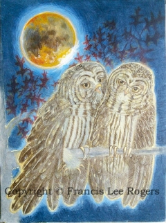 Barred Owls during a Lunar Eclipse