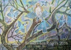 Blue Jays mobbing a hawk.
