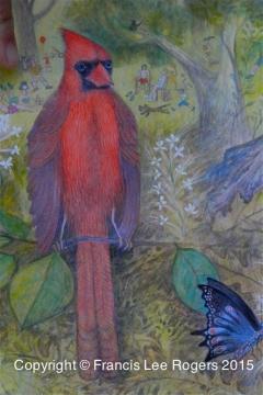Cardinal  #1