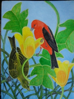 Scarlet Tanager By Lee