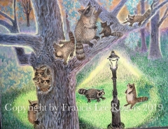 Invasions of the Raccoon's.