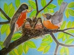 American Robins Family