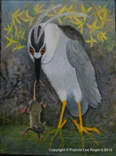 Black Crown Night Heron with a rat .