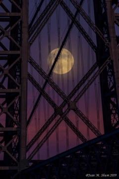Buck Moon (2019)